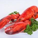 shrimp-510525_640