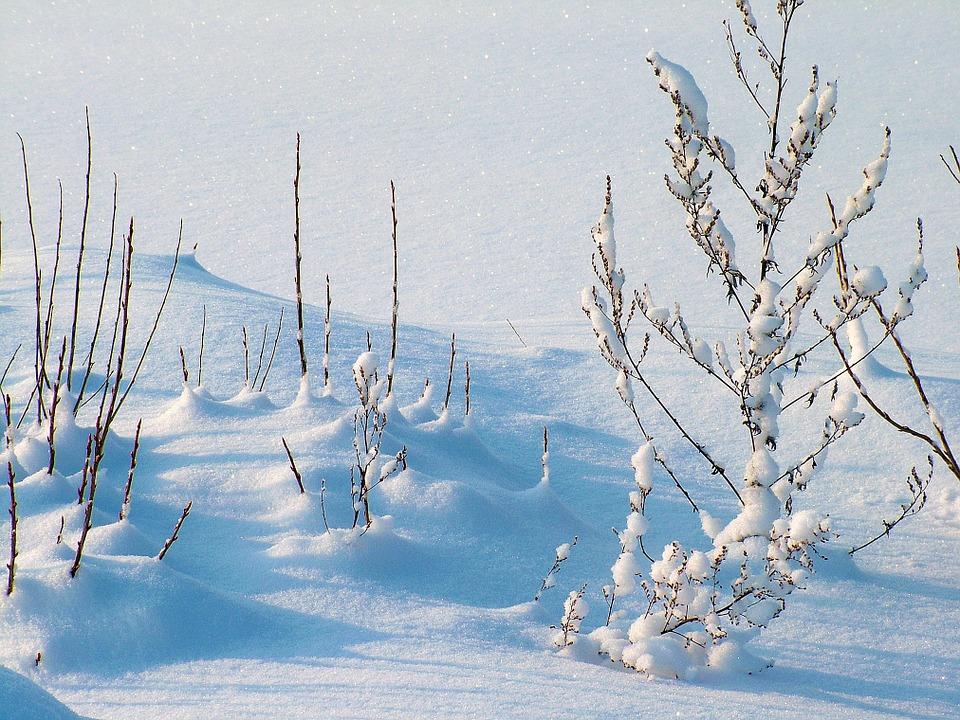 winter-234721_960_720
